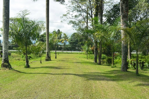Lae-Botanic-Gardens_Advancement-Program_15.jpg
