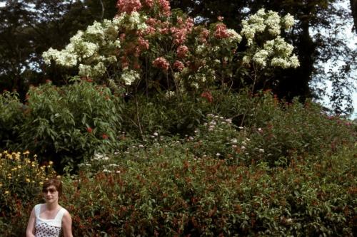 Bev-mid-70's-Gardens-Lae_Bev-Melrose.jpg